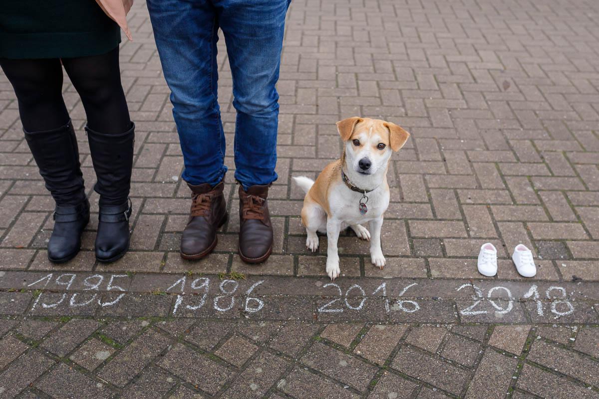 Babbybauchshooting Hund Wesel